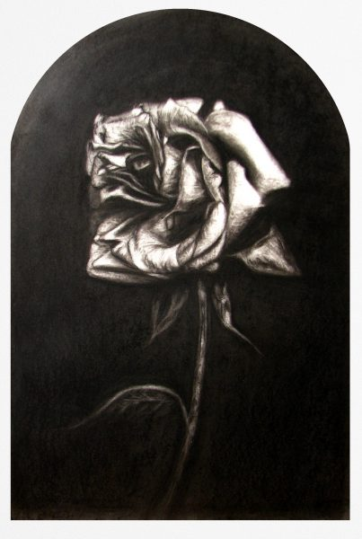 rose framed